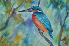 Brusho-paint-Kingfisher