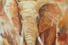 Elephant-Painting