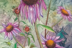 Pink-Echinaceas-Painting