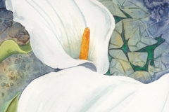 White-Calla-Lilies-Painting