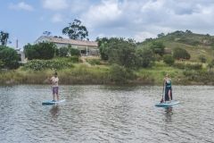 Stand up paddle (SUP) lessons/tours on the river