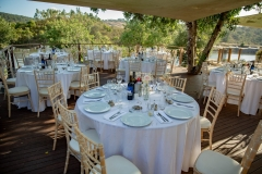 Wedding tables seating plan under mature carob trees