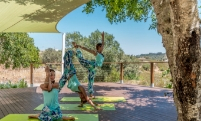 yoga sequence outdoors deck